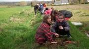 plantations GBO+école communale 008 (Copier)