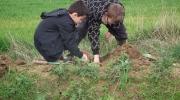 plantations GBO+école communale 005 (Copier)